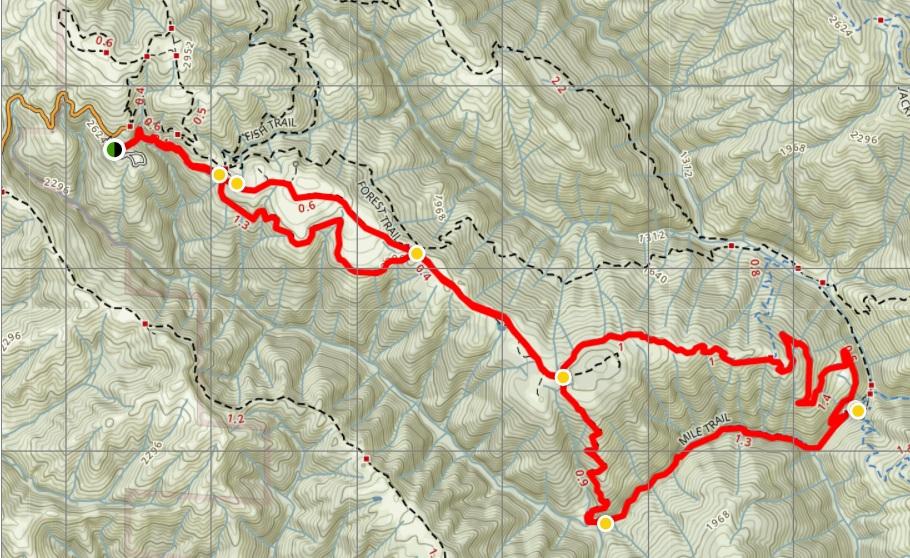 Henry Coe - China Hoe Loop Trail.jpg