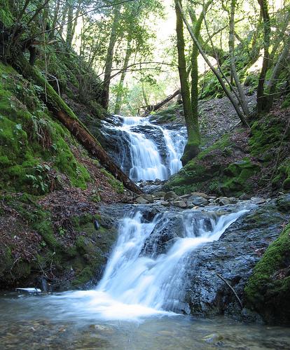 Uvas Canyon waterfall 2.jpg